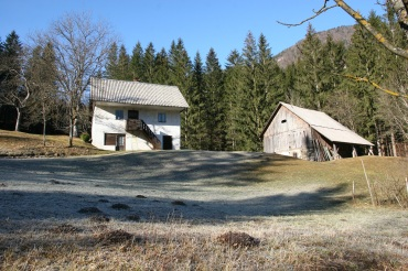 sunny_houses