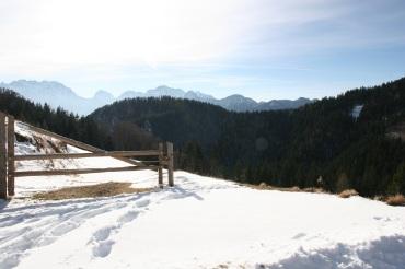 winter_view